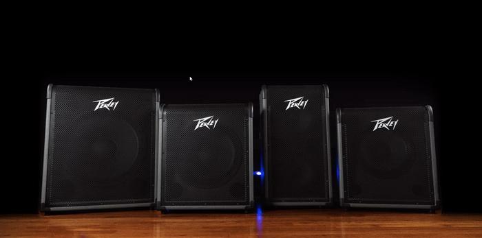 Peavey Max Bass Amp Series 700x.jpg