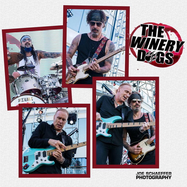 winery 600.jpg