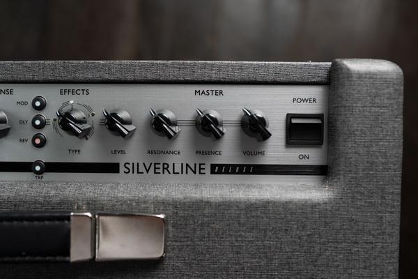 SILVERLINE-DELUXE-TOP-DOWN-LOGO 600x.jpg