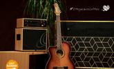 OrtegaLovesLefties, több mint 60 balkezes hangszer II.